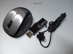 Mouse_15