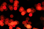 Merrychristmas2008_01